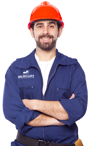 mercury services france